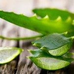 The 5 Best and Simplest Ways to Use Aloe Vera as a Natural Skin Remedy